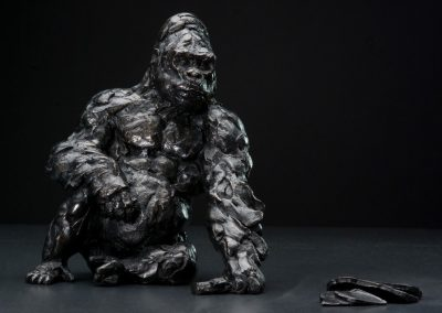 Still life photography - Gorilla
