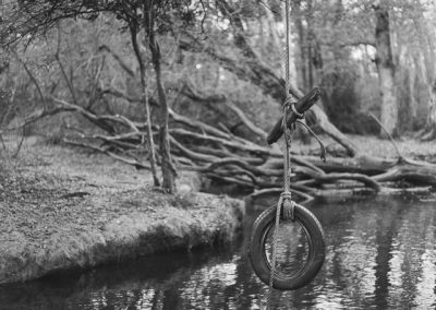 Film photography - New Forest